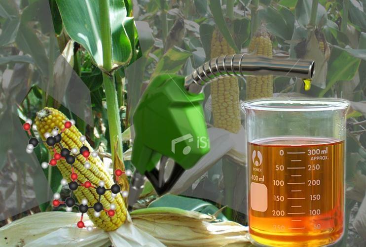 Energi Biomassa yang digunakan untuk Teknologi Kendaraan